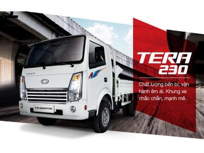 TERA 230